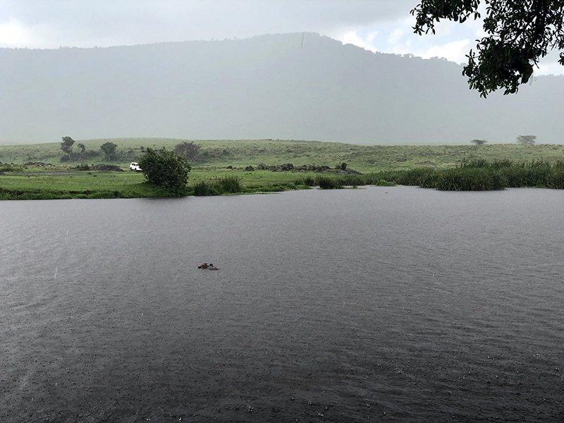 Safari en privado de Tanzania de Yajaira y Pino 36
