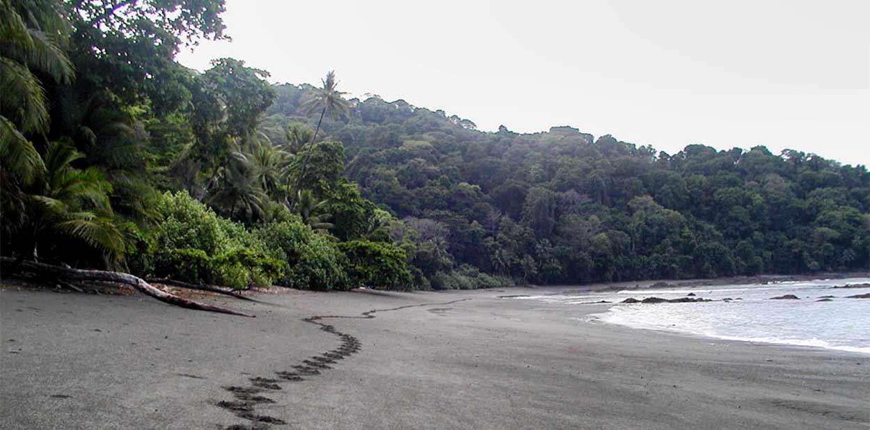 VIAJE A COSTA RICA CON CORCOVADO