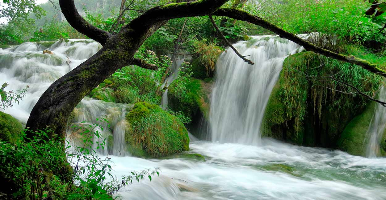 Tour de Eslovenia y Croacia: Parque Nacional de Plitvice - Image by H. Hach from Pixabay