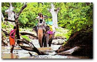 Opinión de los viajeros en Sri Lanka