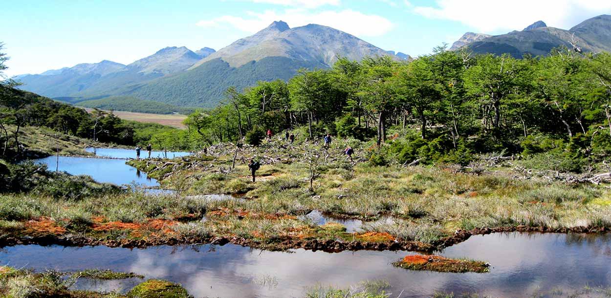 Camino a Laguna Esmeralda - Las mejores excursiones desde Ushuaia