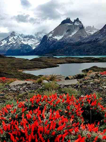 Parque Nacional Torres del Paine desde El Calafate