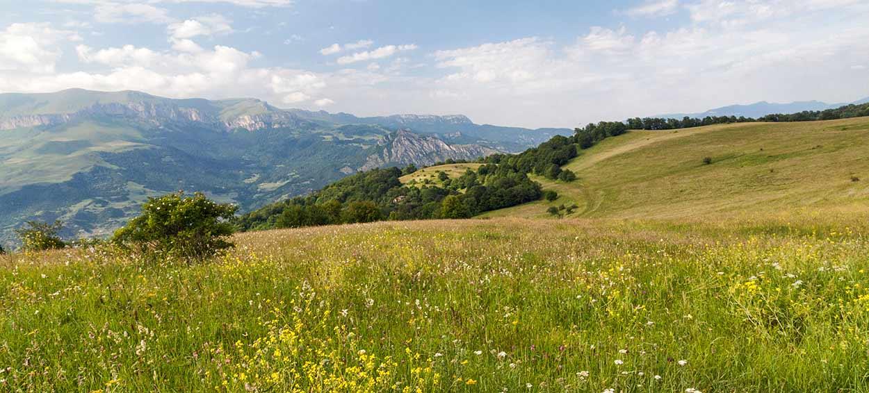 Turismo Vivencial en Armenia (Tour en Privado) - Marcin Konsek/Wikimedia Commons