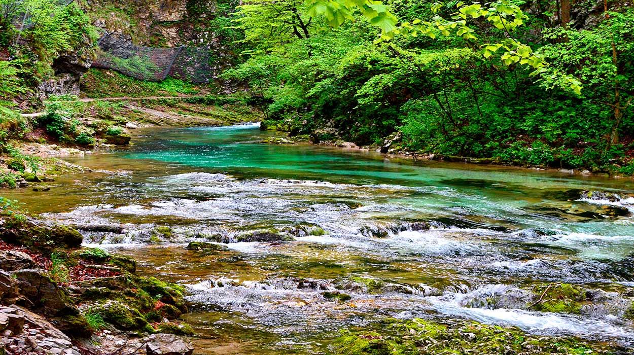 Eslovenia: exuberantemente verde - 14 Razones para viajar a Eslovenia - Image by Cassia Friello from Pixabay