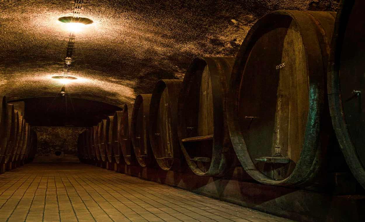 Una casi bicentenaria bodega en los subterráneos de Máribor - 14 Razones para viajar a Eslovenia
